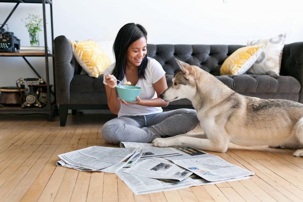 What pet-owning tenants should know about no-pets clauses
